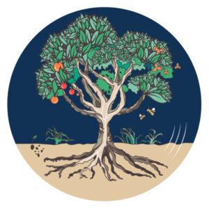 L'arbre des imaginaires par Graines de Récits Illustration de l'ARBRE